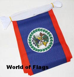 Belize Bunting 6m