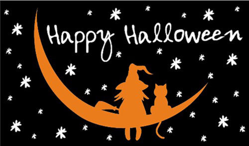 Happy Halloween Witch And Cat On A Moon Flag