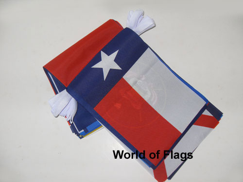 USA States Bunting with 50 Flags