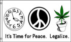 Its Time For Peace Flag