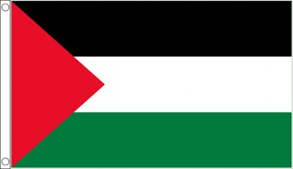 2ft by 3ft Palestine Flag