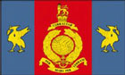 Royal Marines Reserves Merseyside Flag