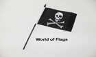 Skull and Crossbones Hand Flag