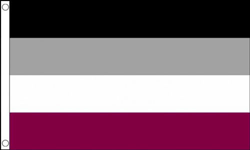 2ft by 3ft Asexual Flag