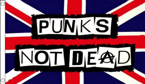 Punks Not Dead Flag