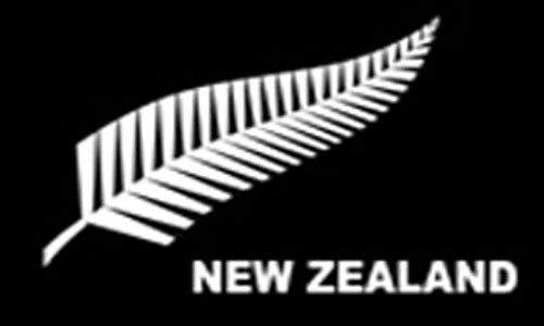 2ft by 3ft New Zealand Silver Fern Flag