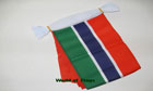 Gambia Bunting 9m
