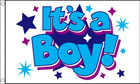 Its A Boy Flag with Stars