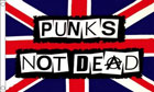 2ft by 3ft Punks Not Dead Flag