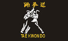 Taekwondo Flag Only A Few Left