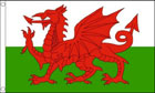 Wales Flag Special Offer