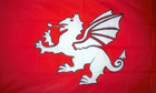 White Dragon Flag